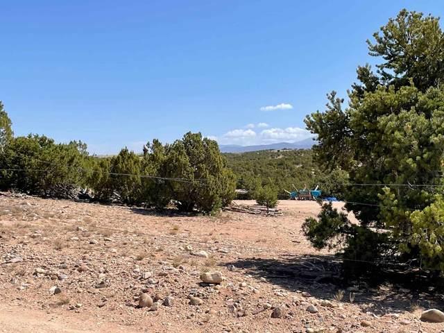 131 Camino Tres Arroyos, Santa Fe, NM 87507 (MLS #202102408) :: Neil Lyon Group | Sotheby's International Realty