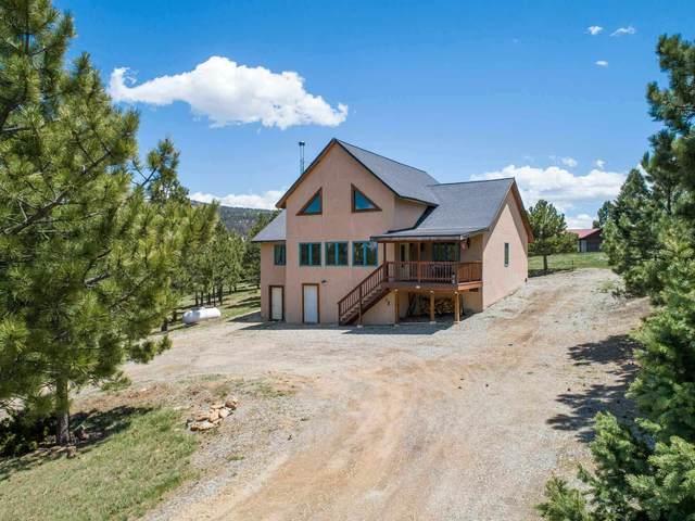 23 Oakwood, Angel Fire, NM 87110 (MLS #202102452) :: The Very Best of Santa Fe