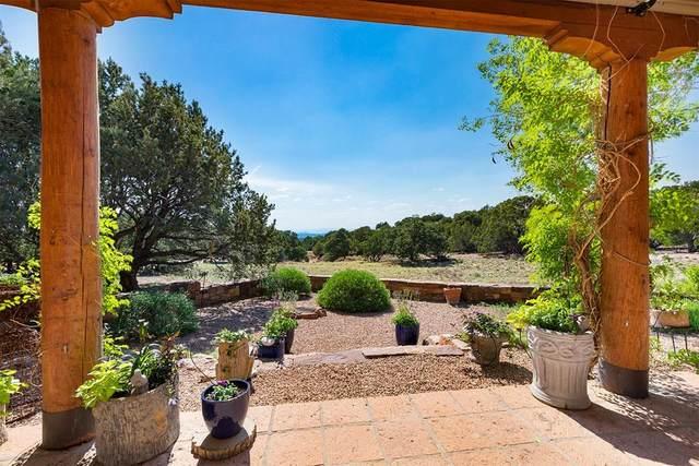 17 Mint Circle, Santa Fe, NM 87506 (MLS #202102471) :: Berkshire Hathaway HomeServices Santa Fe Real Estate
