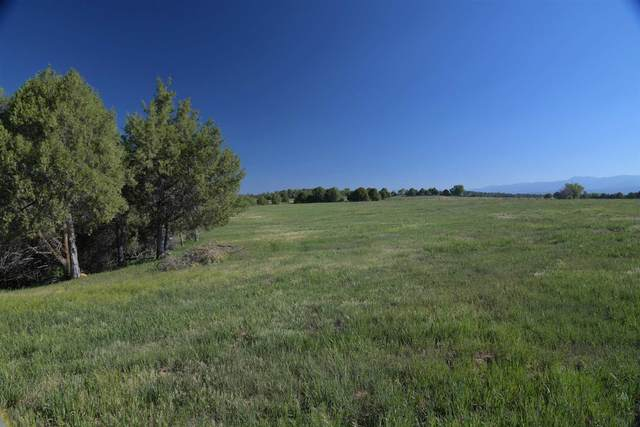 Tract 3 Nm St Hwy 95, Chama, NM 87520 (MLS #202102494) :: The Very Best of Santa Fe