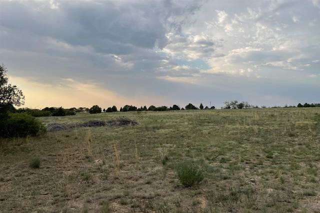 Tract C Calle Posesion, Truchas, NM 87578 (MLS #202102517) :: Summit Group Real Estate Professionals