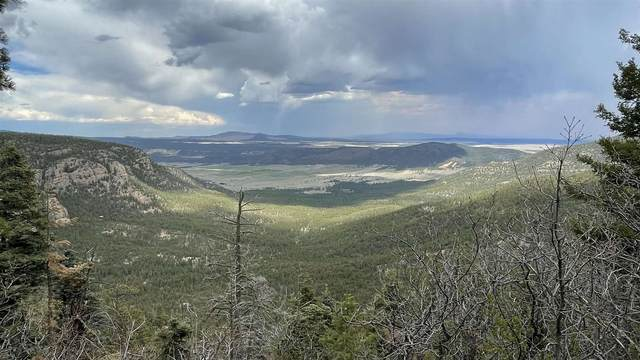 80 Acres Trumbell Canyon, Mora, NM 87732 (MLS #202102550) :: Neil Lyon Group   Sotheby's International Realty
