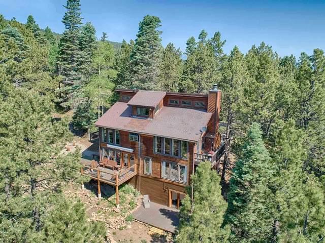 19 Chino Terrace, Angel Fire, NM 87710 (MLS #202102553) :: The Very Best of Santa Fe