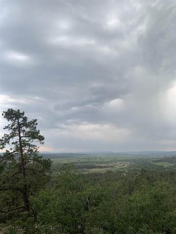 TBD Ticonderoga Dr, Chama, NM 87520 (MLS #202102563) :: Summit Group Real Estate Professionals