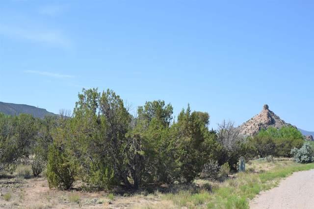 B-1 Lot 2 Duende Dr., Ojo Caliente, NM 87549 (MLS #202102590) :: The Very Best of Santa Fe