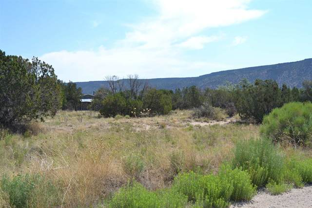 TR D Lot 1B Duende Dr, Ojo Caliente, NM 87549 (MLS #202102593) :: Summit Group Real Estate Professionals