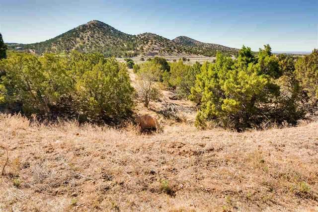 5 Calle Electra, Santa Fe, NM 87508 (MLS #202102617) :: Neil Lyon Group | Sotheby's International Realty