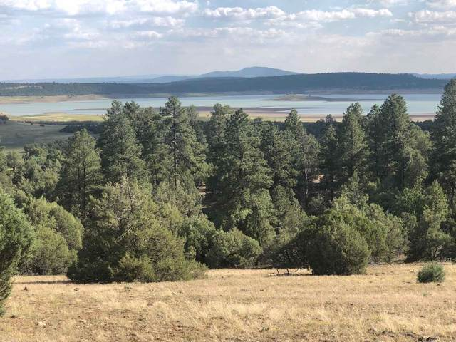 A-4 Vista Isla, Rutheron, NM 87575 (MLS #202102630) :: The Very Best of Santa Fe