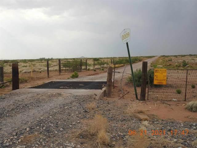 2050 Clabber Top Road, Deming, NM 88030 (MLS #202102638) :: Berkshire Hathaway HomeServices Santa Fe Real Estate