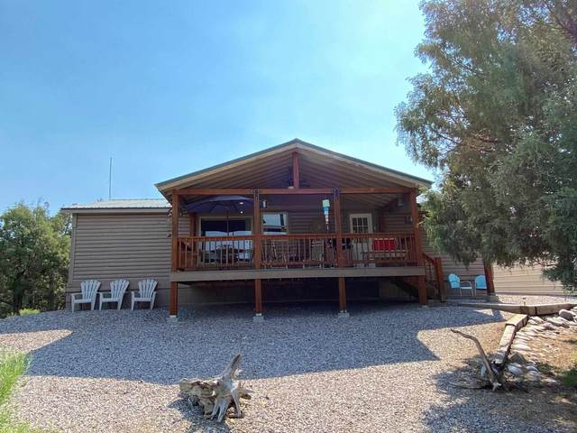 808 Cr 322, Los Ojos, NM 87551 (MLS #202102659) :: Summit Group Real Estate Professionals