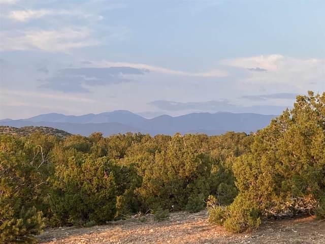 60 E Estrada Calabasa, Santa Fe, NM 87506 (MLS #202102660) :: The Very Best of Santa Fe