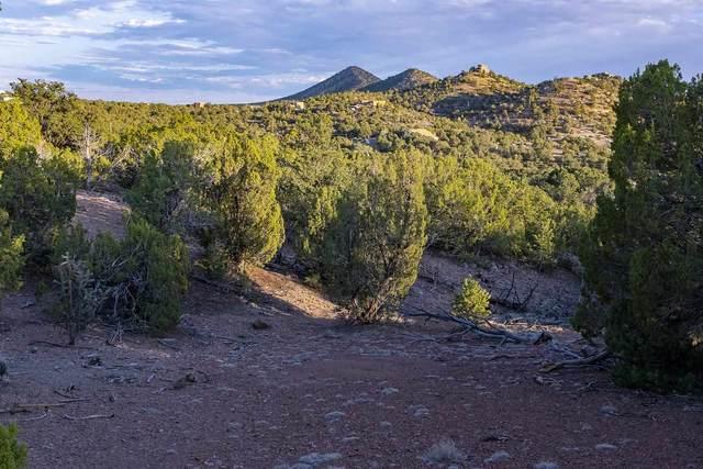 12 Paseo Del Pinon, Santa Fe, NM 87508 (MLS #202102714) :: Summit Group Real Estate Professionals