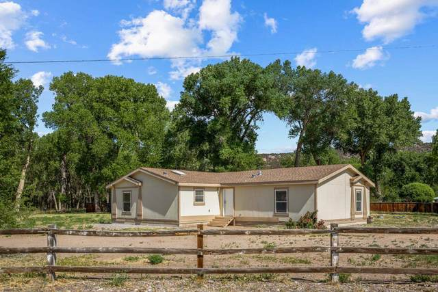 77 Private Drive 1037A, Alcalde, NM 87511 (MLS #202102719) :: Summit Group Real Estate Professionals