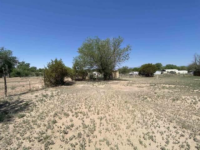 11 Gonzales, Santa Fe, NM 87506 (MLS #202102739) :: Neil Lyon Group   Sotheby's International Realty