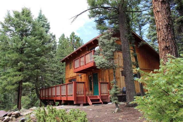 107 Turkey Trail, Jemez Springs, NM 87025 (MLS #202102744) :: Neil Lyon Group | Sotheby's International Realty