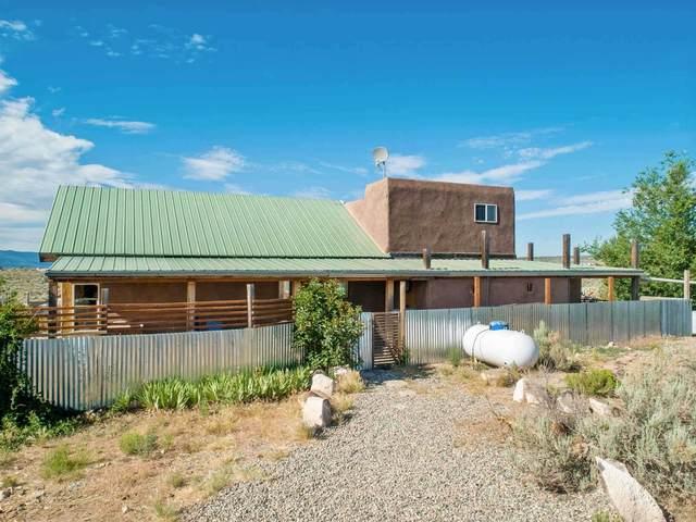 9 Sunset Blvd, Carson, NM 87517 (MLS #202102748) :: The Very Best of Santa Fe