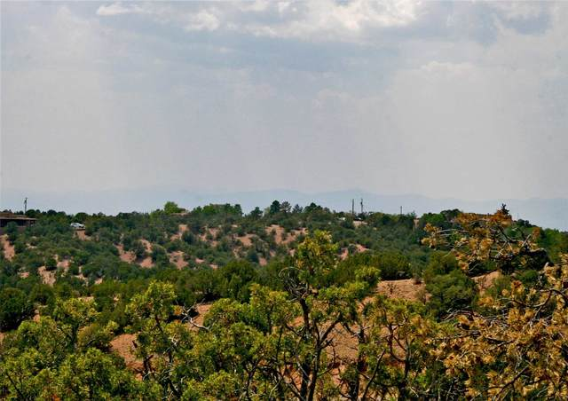 304 Brownell Howland Rd Tracts B-1 And , Santa Fe, NM 87501 (MLS #202102770) :: Summit Group Real Estate Professionals