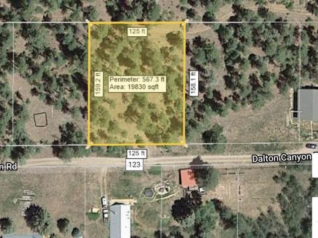 291 Dalton Canyon Rd, Pecos, NM 87552 (MLS #202102774) :: Neil Lyon Group | Sotheby's International Realty