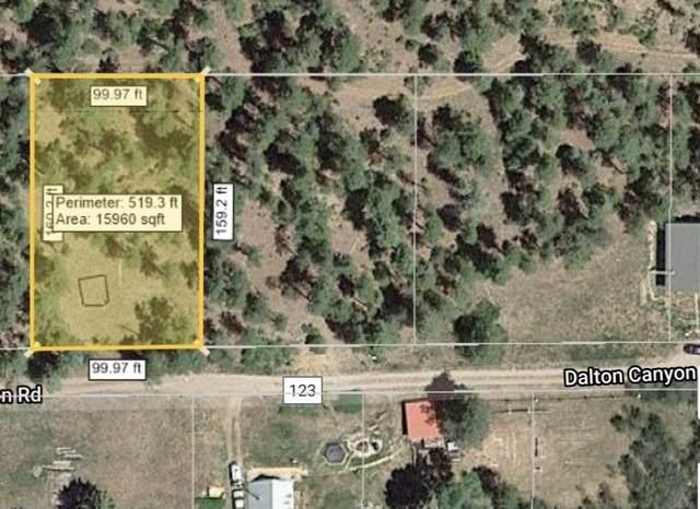 293 Dalton Canyon Rd, Pecos, NM 87552 (MLS #202102776) :: Neil Lyon Group | Sotheby's International Realty