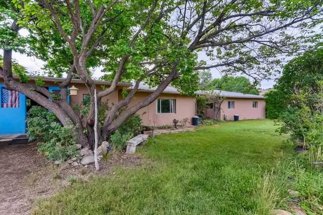 292 County Road 84, Santa Fe, NM 87506 (MLS #202102829) :: Neil Lyon Group | Sotheby's International Realty