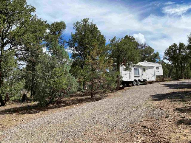 0 Christy Lane, Los Ojos, NM 87551 (MLS #202102836) :: Summit Group Real Estate Professionals