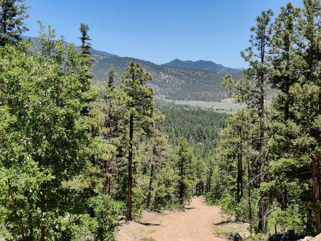 Lot 16 Twin Pine Subdivision, Mora, NM 87732 (MLS #202102855) :: The Very Best of Santa Fe
