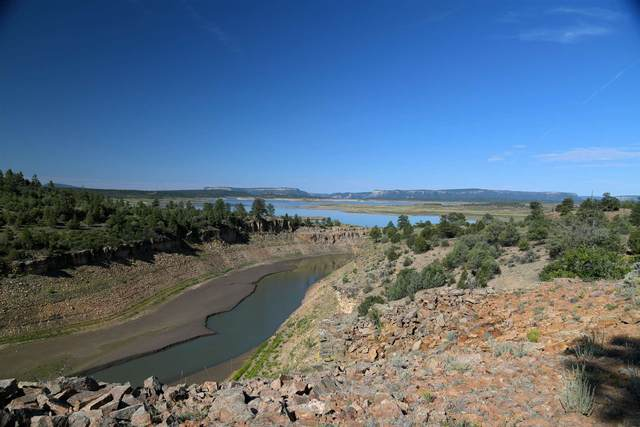 0 Canyon Drive, Rutheron, NM 87551 (MLS #202102886) :: The Very Best of Santa Fe