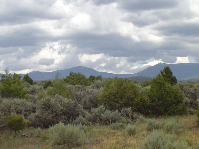 TBD Nm Rd 77, Truchas, NM 87578 (MLS #202102913) :: Summit Group Real Estate Professionals