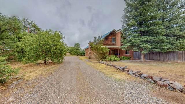 1132 Highway 554, El Rito, NM 87510 (MLS #202102918) :: Summit Group Real Estate Professionals