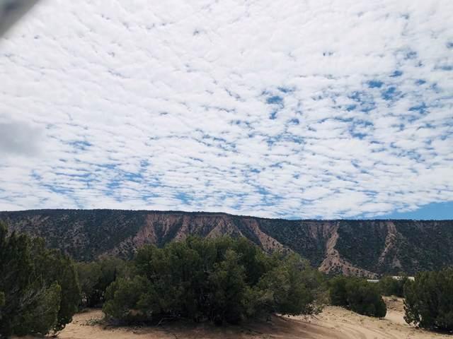 Lot 21 Cerrito De Baca, Ojo Caliente, NM 87549 (MLS #202102921) :: The Very Best of Santa Fe