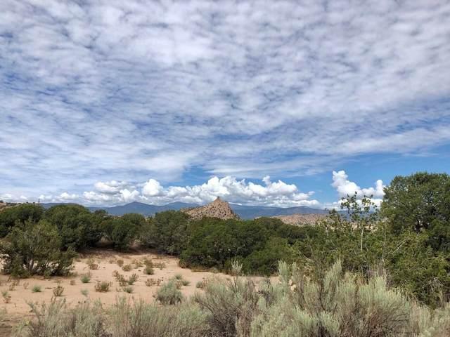 Lot 19 Cerrito De Baca, Ojo Caliente, NM 87549 (MLS #202102923) :: The Very Best of Santa Fe