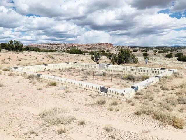 Lots 5 & 6 Pueblo Drive, Medanales, NM 87548 (MLS #202102946) :: Summit Group Real Estate Professionals