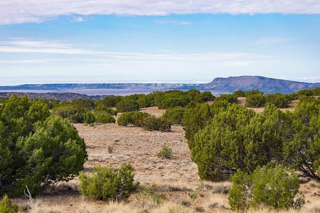 Highway 41, Galisteo, NM 87540 (MLS #202102960) :: Neil Lyon Group | Sotheby's International Realty