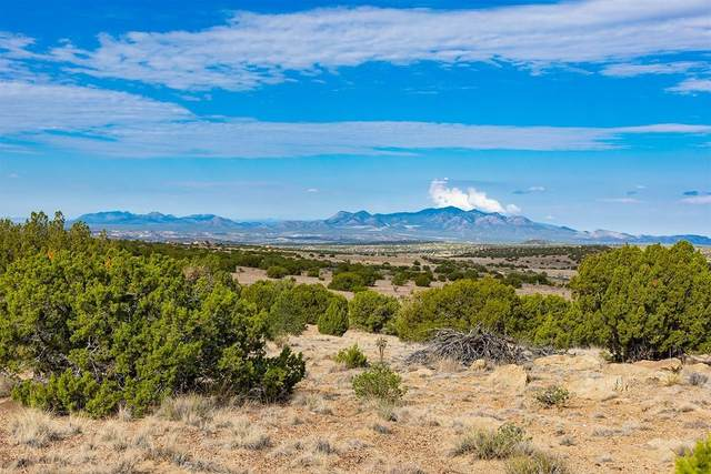 RanchoTranquila Highway 41, Galisteo, NM 87540 (MLS #202102962) :: Neil Lyon Group | Sotheby's International Realty