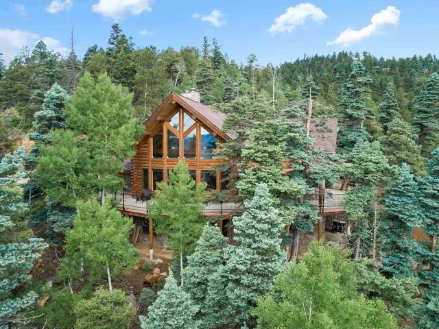 40 Taos Pines Ranch Road, Angel Fire, NM 87710 (MLS #202102977) :: The Very Best of Santa Fe