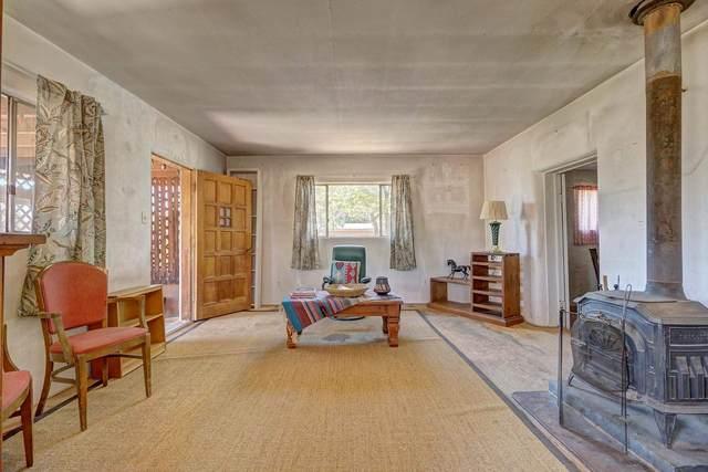 1217 Maez Rd, Santa Fe, NM 87505 (MLS #202102983) :: Summit Group Real Estate Professionals