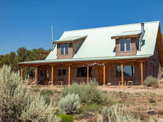 205 B Private Drive 1101, Embudo, NM 87531 (MLS #202103009) :: The Very Best of Santa Fe