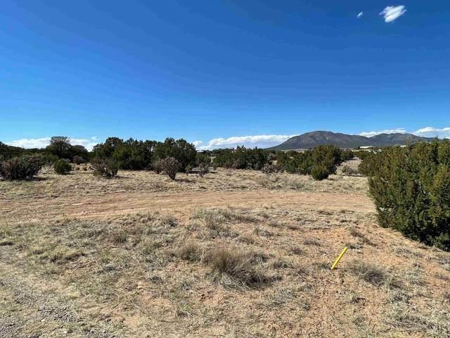 9 Via Gavilan, Edgewood, NM 87015 (MLS #202103028) :: The Very Best of Santa Fe
