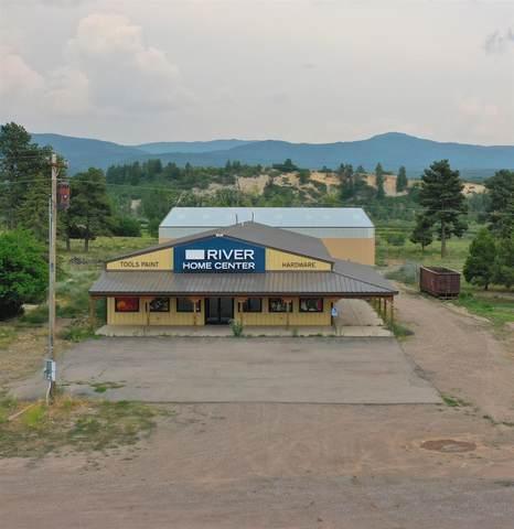 1512 Nm St Hwy 17, Chama, NM 87520 (MLS #202103058) :: The Very Best of Santa Fe