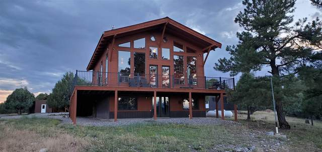 397 Shroyer Drive, Chama, NM 87520 (MLS #202103073) :: The Very Best of Santa Fe