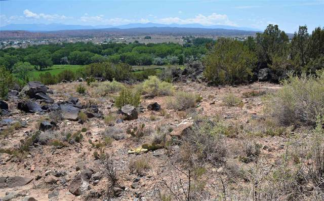 TBD Pr Dr 1080, Lyden, NM 87582 (MLS #202103094) :: Summit Group Real Estate Professionals