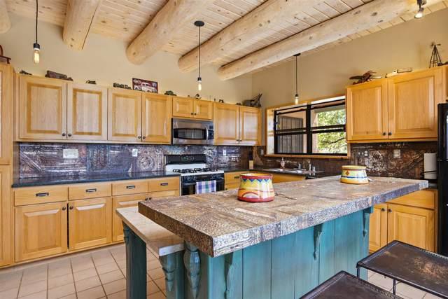 18 Valencia Loop, Santa Fe, NM 87508 (MLS #202103120) :: Neil Lyon Group | Sotheby's International Realty