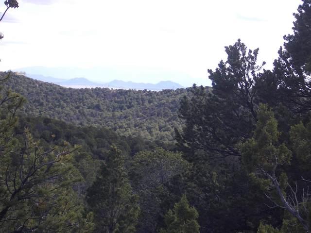 Lot 88 Cerros Colorados, Santa Fe, NM 87501 (MLS #202103136) :: Summit Group Real Estate Professionals