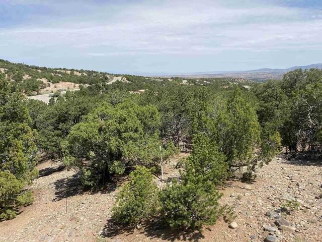 2955 Broken Sherd, Santa Fe, NM 87506 (MLS #202103137) :: Neil Lyon Group | Sotheby's International Realty