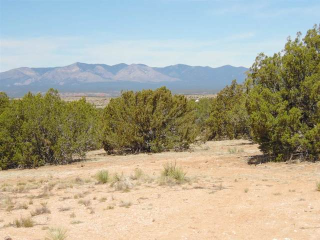 1202 Deer Canyon Trail, Mountainair, NM 87036 (MLS #202103143) :: Summit Group Real Estate Professionals