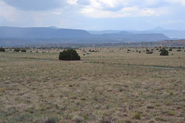 TBD Buffalo Trail, Abiquiu, NM 87510 (MLS #202103161) :: The Very Best of Santa Fe