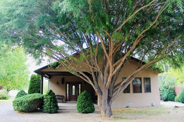 1205 Calle Don Miguel, Espanola, NM 87532 (MLS #202103180) :: Summit Group Real Estate Professionals