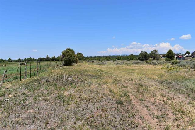 TBD Cr 77, Truchas, NM 87578 (MLS #202103197) :: Summit Group Real Estate Professionals
