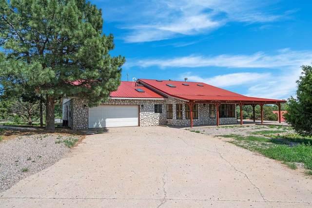 17 Raven Road, Tijeras, NM 87059 (MLS #202103277) :: Summit Group Real Estate Professionals