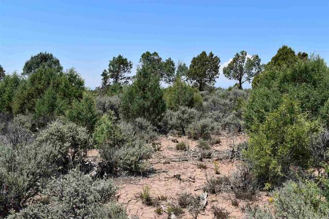 TBD County Road 77, Truchas, NM 87578 (MLS #202103302) :: Summit Group Real Estate Professionals